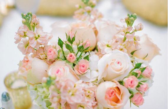 Купить саженцы кремовых роз