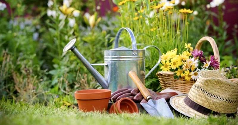 Правила работы на огороде