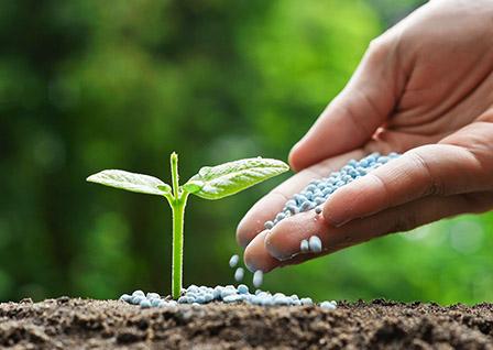 Удобрение для сада и огорода. Доставка почтой по Украине