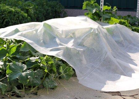 Белое агроволокно