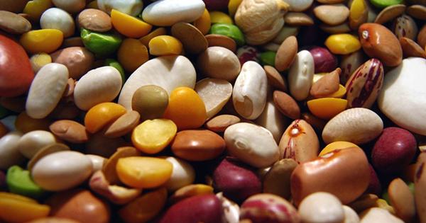 Купити насіння бобів
