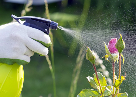 Купить инсектициды в Украине