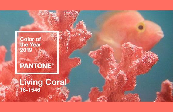 Оттенок Живой Коралл